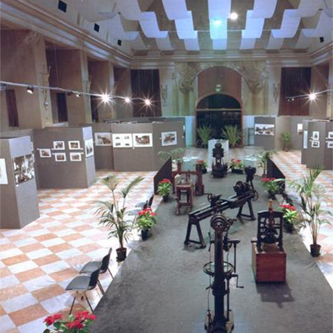 The Exhibitions